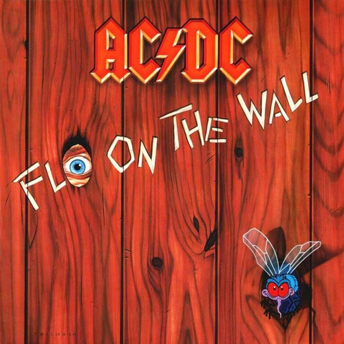 acdc-fly-on-the-wall